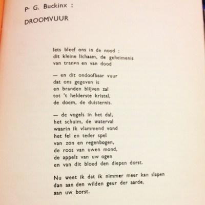 Gedicht 'Droomvuur' uit Vormen - Pieter G. Buckinx