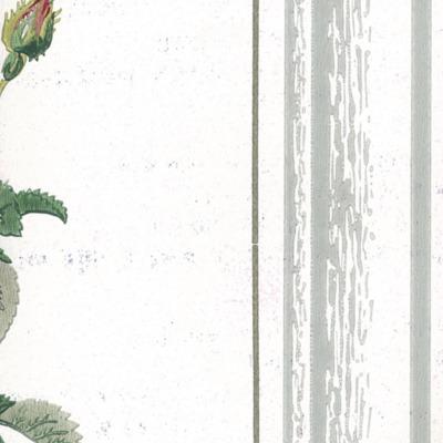 Creatieve uitspatting: behangpapier -daele 11